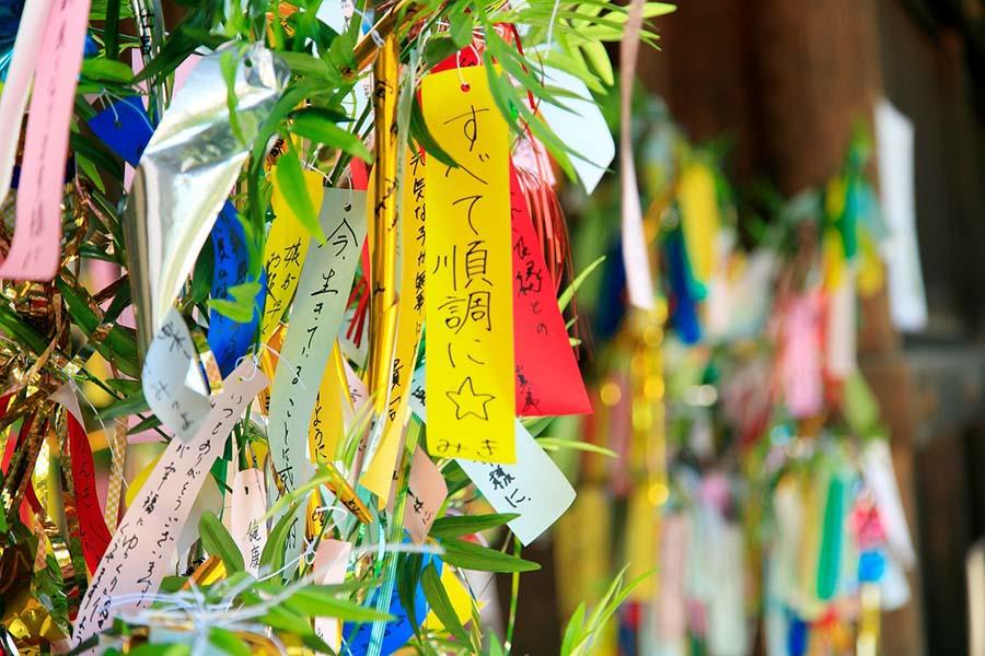 七夕の笹飾り【写真:写真AC】