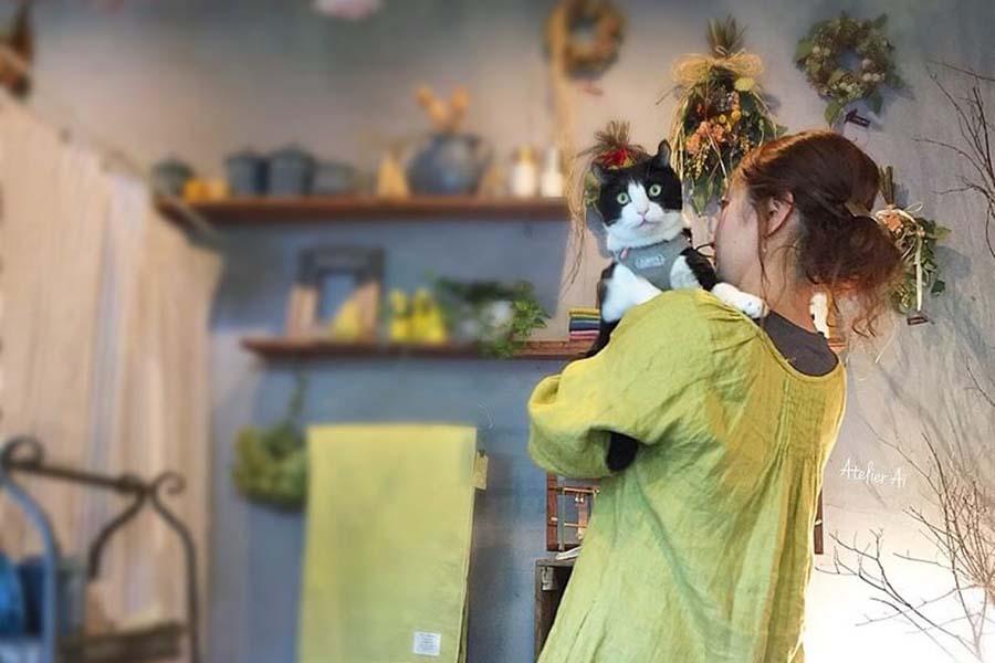 看板ねこ「キャスパー」を抱く、オーナーの「愛」さん。キャスパーがいちばん落ち着く場所【写真提供:愛さん】