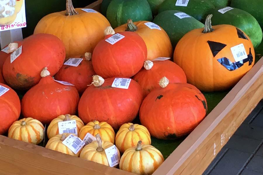 秋には様々な品種のカボチャが店頭に並ぶ【写真:こばやしなつみ】