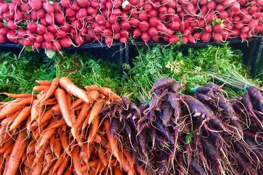 色鮮やかな新鮮野菜が並ぶアメリカ・ロサンゼルスのファーマーズマーケット【写真:小田島勢子】