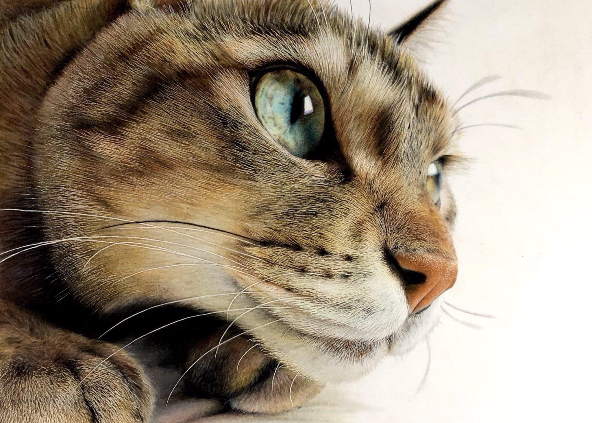 瞳の透明感がすごい! まるで写真のよう【写真提供:音海 はる(@huwahuwa1_25)さん】