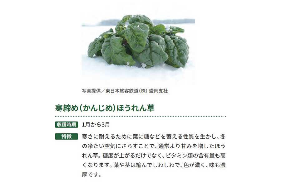 寒締め(かんじめ)ホウレン草【出典:農林水産省「冬野菜」より作成】