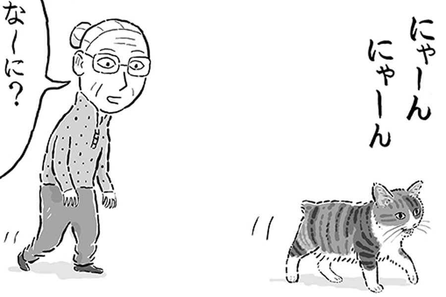 漫画のワンシーン【画像提供:湊文『猫の菊ちゃん』(@sobun_nekomanga)さん】