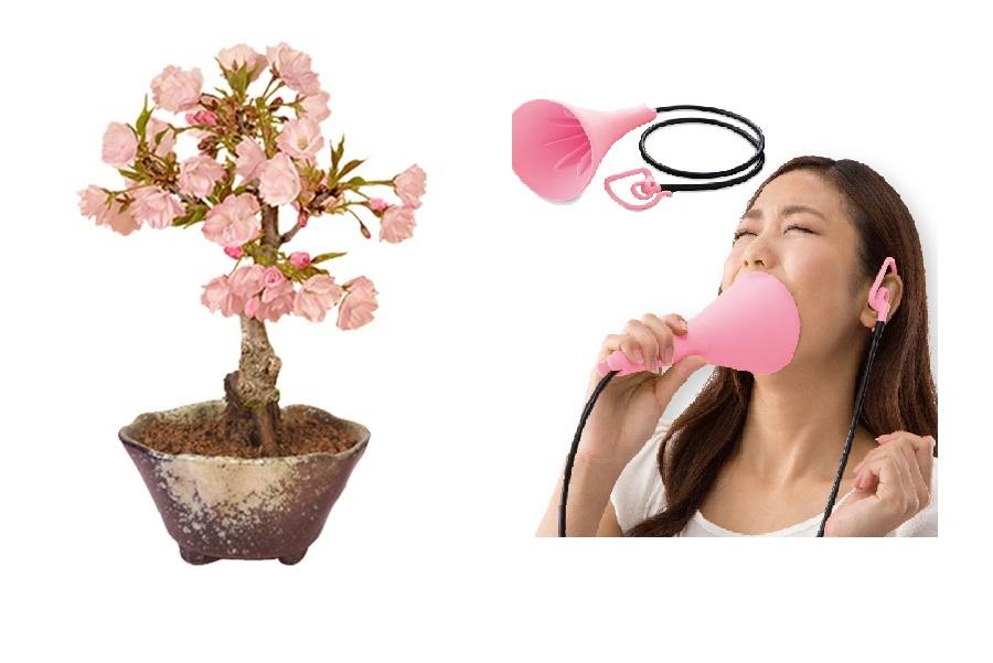 桜盆栽(左)、発声練習アイテム【写真提供:楽天市場】