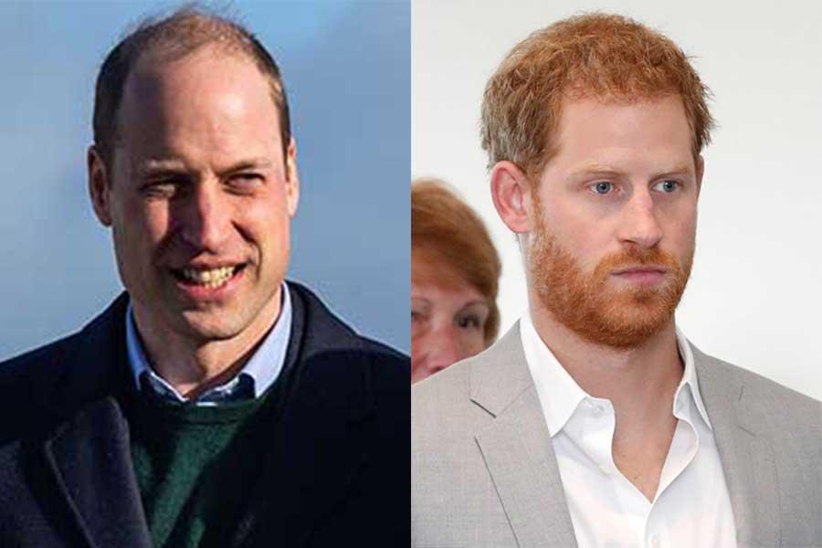 ウイリアム王子とヘンリー王子【写真:Getty Images】