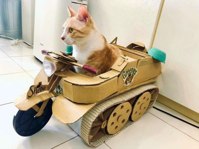 手作り戦車に乗る「ちくわ大明神」くん【写真提供:安田そうし/hinode kani@Unicorn鯖(@hinode_kani)さん】