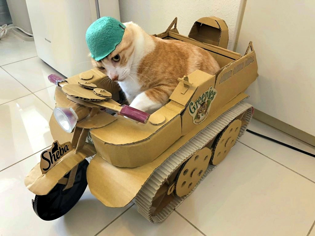 猫 ダンボール 戦車
