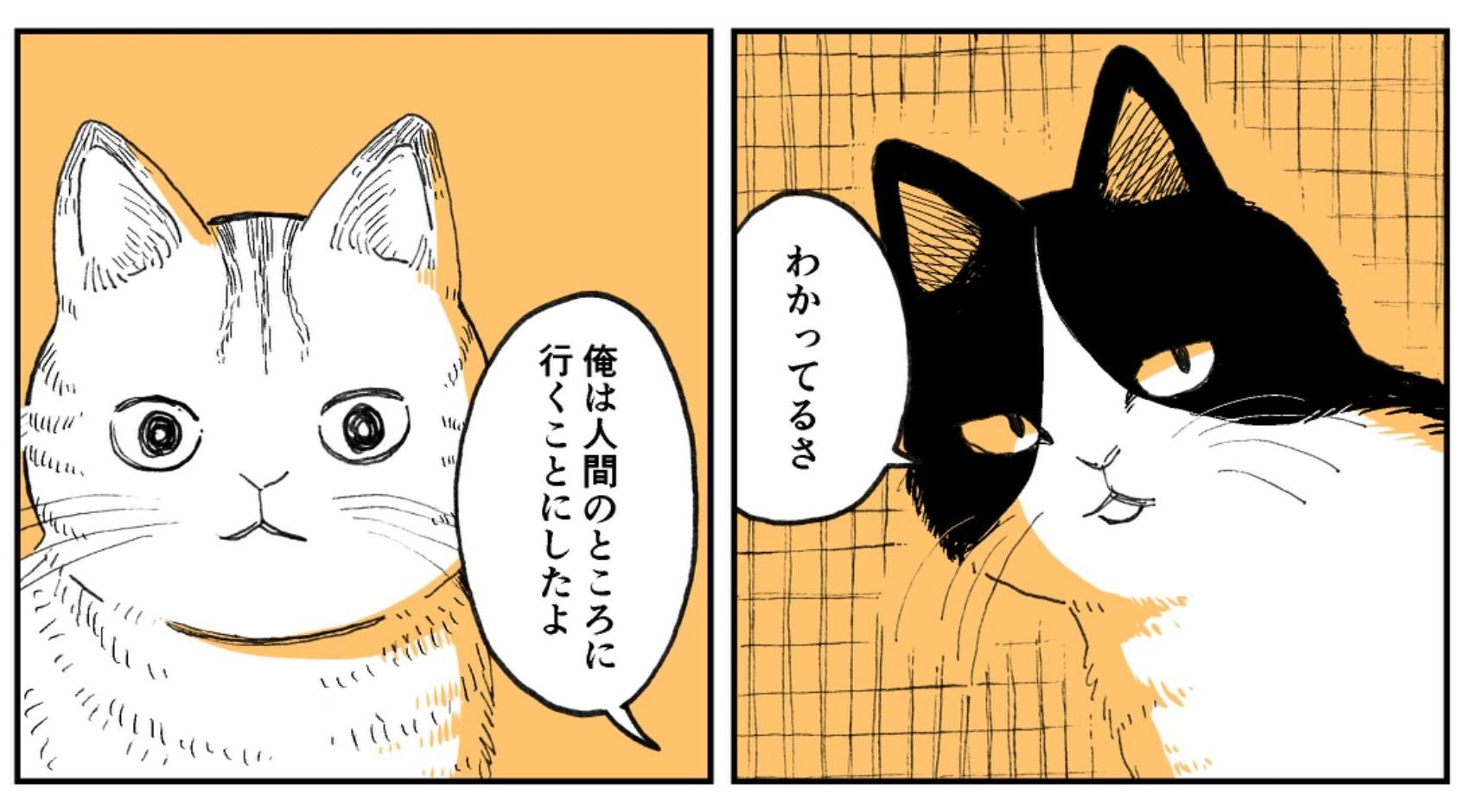 漫画のワンシーン【画像提供:園田ゆり(@sonoda_yuri)さん】