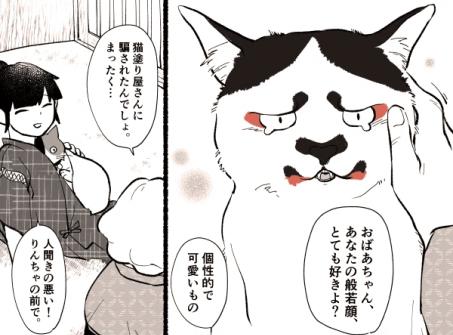 第4話のワンシーン。般若顔の個性派ねこ「はにゃ」【画像提供:清水めりぃ(@zatta_shimizu)さん】