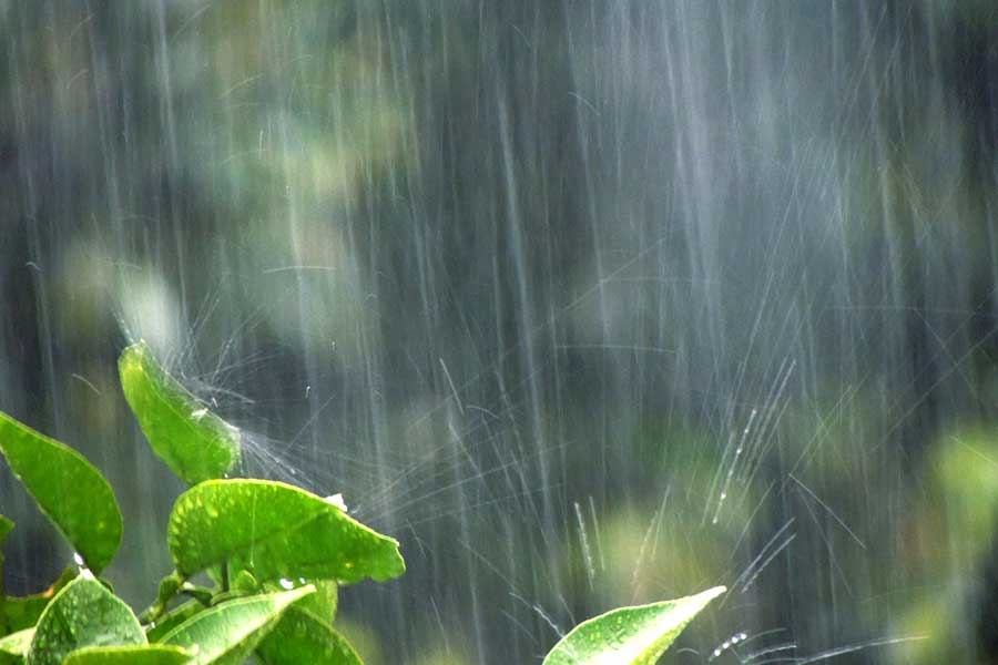 浸水被害を防ぐためにまずやるべきこと いざという時に覚えておきたい水害対策
