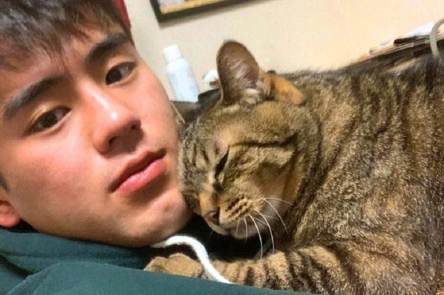 """イケメン格闘家を""""弟""""だと思っている14歳のキジ猫 試合に向かう前の合言葉とは"""