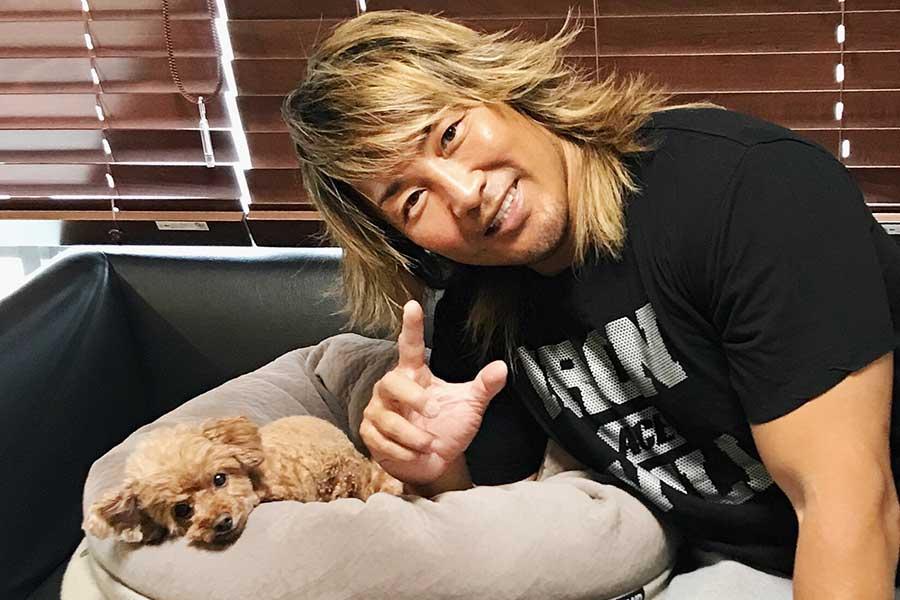 """新日本プロレス棚橋弘至のオンリー""""ワン"""" 「愛してま~す!」を一番間近で聞く 相思相愛の愛犬「ハナ」ちゃん"""