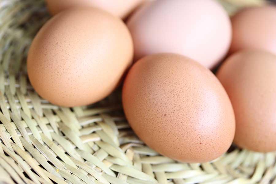 卵にはさまざまな食べ方があり、日本人にもなじみ深い(写真はイメージ)【写真:写真AC】