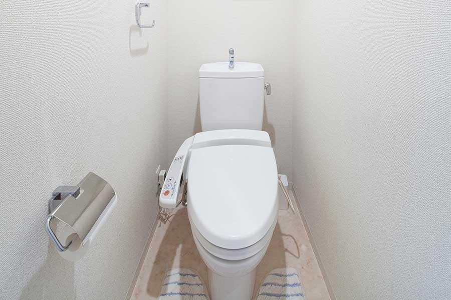 今回はトイレの掃除と風水について解説(写真はイメージ)【写真:写真AC】