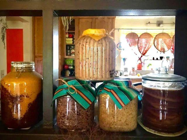 左からマスタード、味噌3種、紅茶キノコ。すべて発酵食【写真:小田島勢子】
