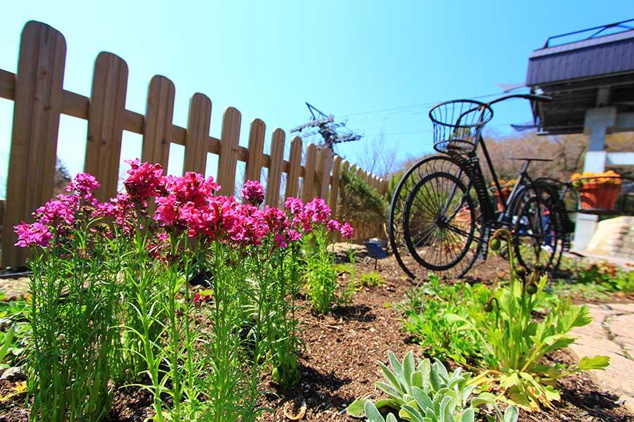 人目に付きやすいからこそ整えておきたい庭やベランダ(写真はイメージ)【写真:写真AC】