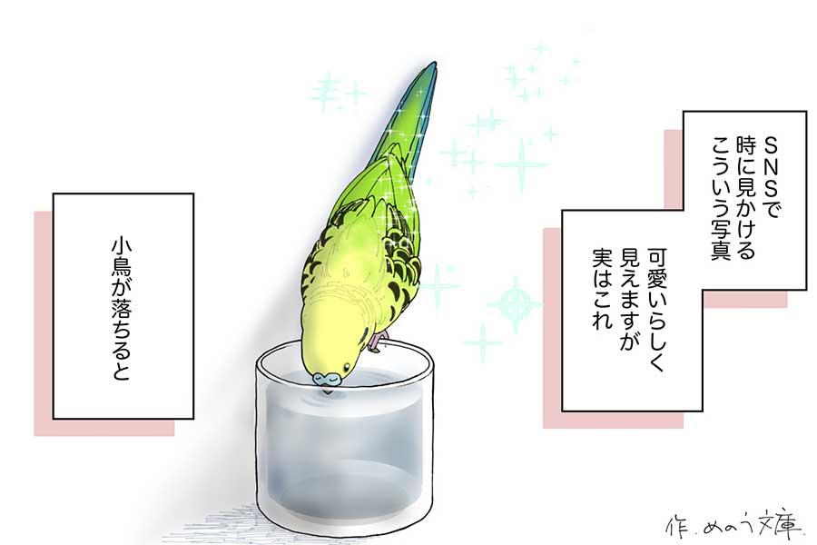 漫画のワンシーン【画像提供:めのう文庫(@mari_mon)さん】