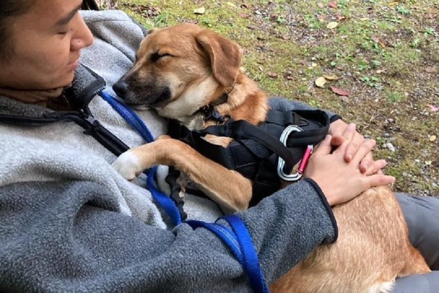 ママに抱っこされ、幸せそうな禄くん【写真提供:保護犬の禄と家族の記録(roku.hogoken)】