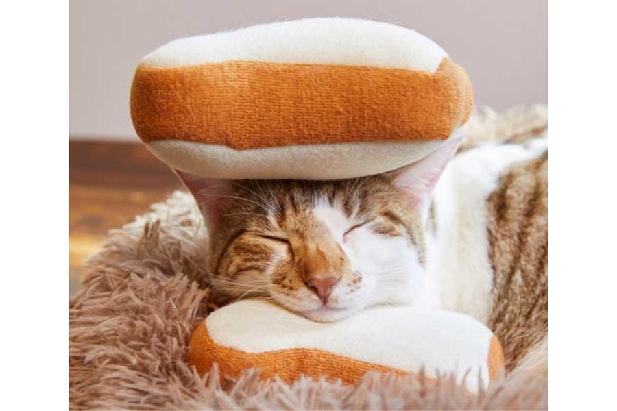4月1日(木)全国のサブウェイ限定発売「ほっこり猫サンド(全5種)」 ※嘘です【写真:日本サブウェイ合同会社】