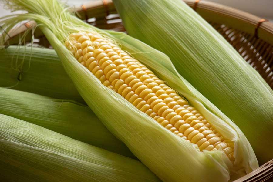 一見手間に思えるトウモロコシの調理。JA全農が簡単調理法を伝授(写真はイメージ)【写真:写真AC】