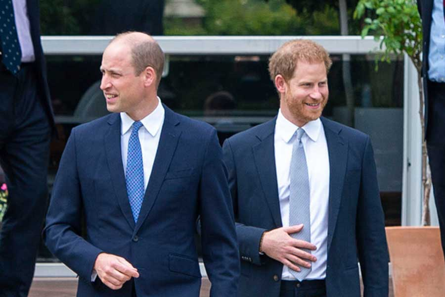 ウイリアム王子とヘンリー王子【写真:AP】