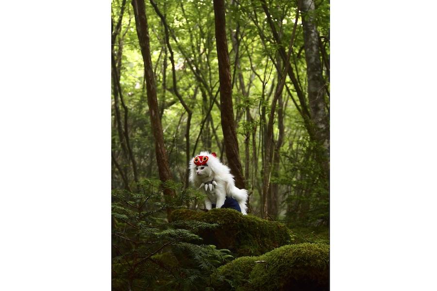 山犬に育てられた人間の少女・サンのようないで立ちのゆきちゃん【写真提供:夜行さん(@YagyouNEKO)さん】