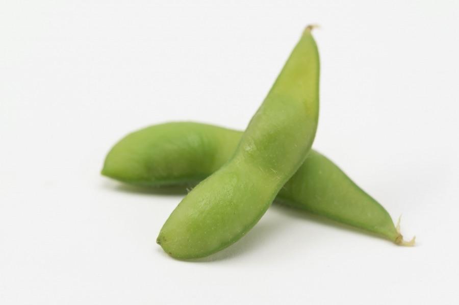 間もなく収穫のピークを迎える枝豆(写真はイメージ)【写真:写真AC】