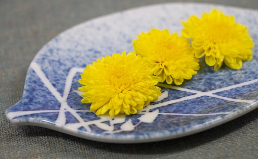 現代の暮らしにもなじみがある菊の花(写真はイメージ)【写真:写真AC】
