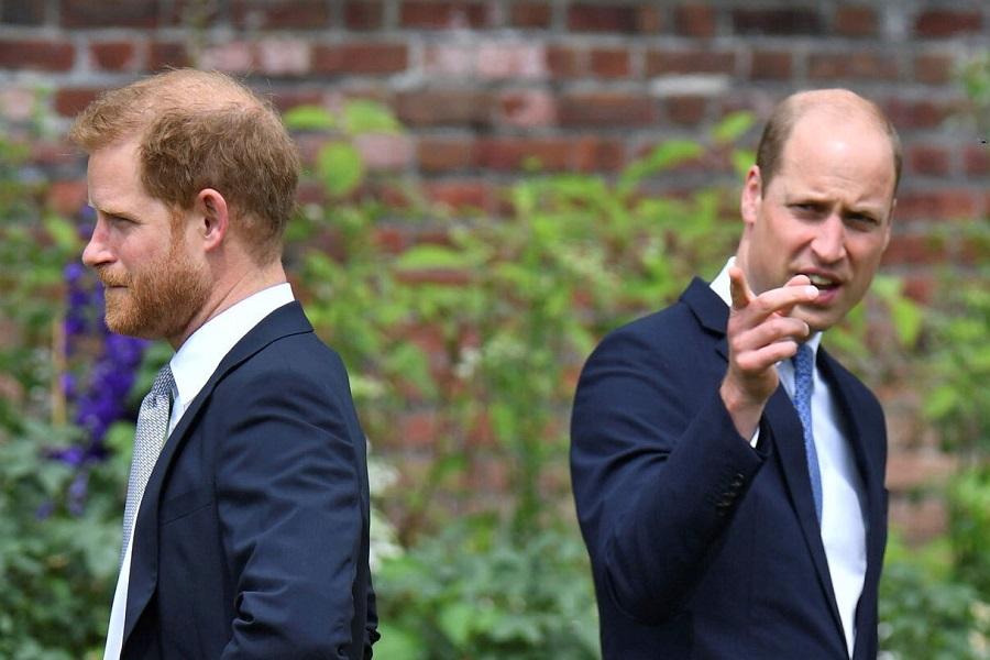 ウイリアム王子(右)とヘンリー王子(左)【写真:AP】